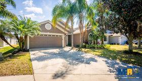 11156 Rodeo Lane, Riverview, FL 33579