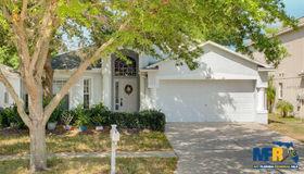 11118 Lakeside Vista Drive, Riverview, FL 33569