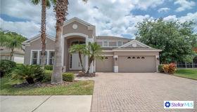 10436 Canary Isle Drive, Tampa, FL 33647