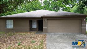 132 Winston Manor Circle, Seffner, FL 33584