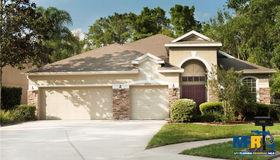 15206 Shearcrest Drive, Lithia, FL 33547
