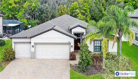 12369 Crestridge Loop, New Port Richey, FL 34655
