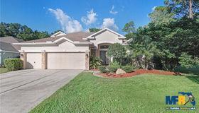 12901 Framingham Court, Tampa, FL 33626
