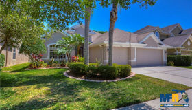 11605 Renaissance View Court, Tampa, FL 33626