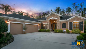 27145 Laurel Chase Lane, Wesley Chapel, FL 33544