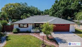 1711 Hibiscus Circle S, Oldsmar, FL 34677