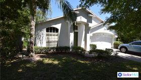 3232 Fremont Court, Land O Lakes, FL 34639