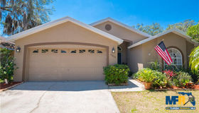 6804 Silver Branch Court, Tampa, FL 33625