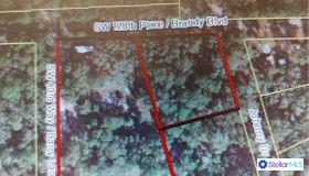 4333 Se 128th Place, Webster, FL 33597