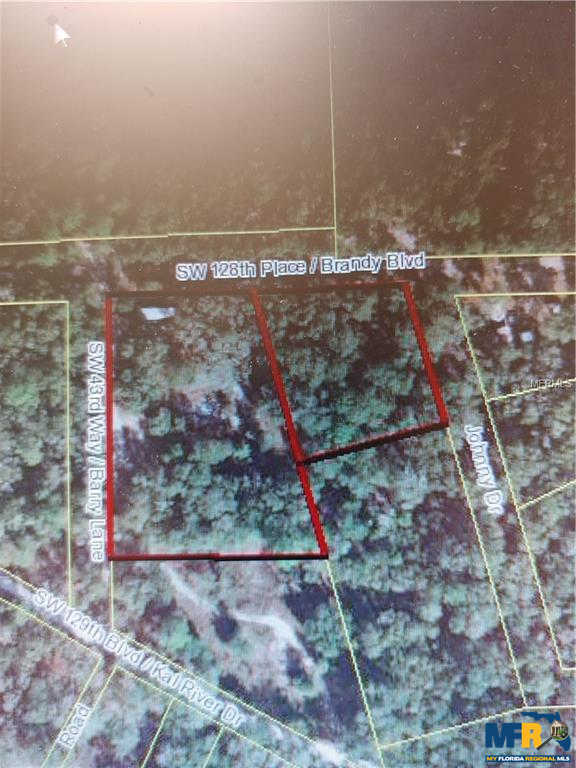 4333 Se 128TH Place, Webster, FL 33597 is now new to the market!