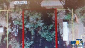 cr 679, Webster, FL 33597
