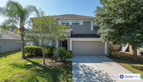 12154 Luftburrow Lane, Hudson, FL 34669