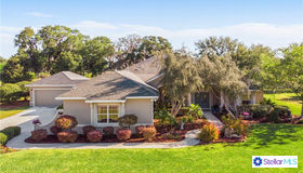648 Ternberry Forest Drive, The Villages, FL 32162