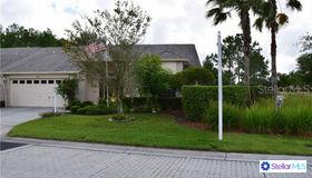 1603 Arlington Oaks Court, Trinity, FL 34655