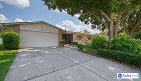 1389 Seabreeze Street, Clearwater, FL 33756
