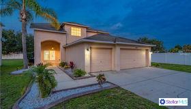 11310 Crestlake Village Drive, Riverview, FL 33569