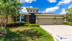 29243 Grass Bunker Drive, San Antonio, FL 33576