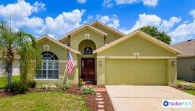 24317 Summer Wind Court, Lutz, FL 33559