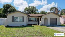 9223 91st St, Seminole, FL 33777
