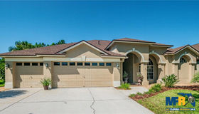 19504 French Lace Drive, Lutz, FL 33558
