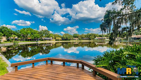 1713 Magdalene Manor Drive, Tampa, FL 33613