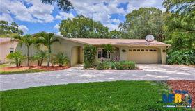 707 Lanewood Drive, Seffner, FL 33584