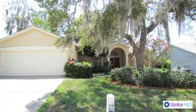 13741 Lanier Court, Hudson, FL 34667