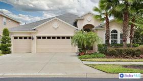 3312 Diamond Falls Circle, Land O Lakes, FL 34638