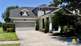 5137 Beach River Road, Windermere, FL 34786