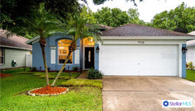 7710 Marbella Creek Avenue, Tampa, FL 33615