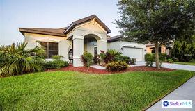 8234 Bluevine sky Drive, Land O Lakes, FL 34637