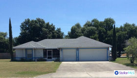 608 S Florida Avenue, Howey IN The Hills, FL 34737