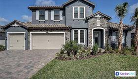 29043 Picana Lane, Wesley Chapel, FL 33543