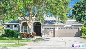 15217 Merlinpark Place, Lithia, FL 33547