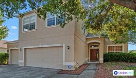 11717 Sunder Berry Street, Hudson, FL 34667