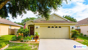 24426 Summer Wind Court, Lutz, FL 33559