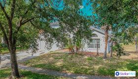 16409 Lake Heather Drive, Tampa, FL 33618