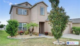 323 Red Kite Drive, Groveland, FL 34736
