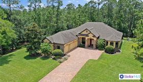 14214 Oakwood Cove Lane, Orlando, FL 32832