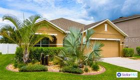 5602 Angelonia Terrace, Land O Lakes, FL 34639