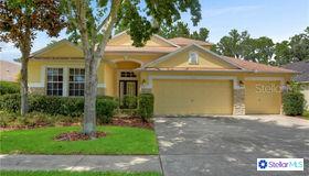 7712 Citrus Blossom Drive, Land O Lakes, FL 34637