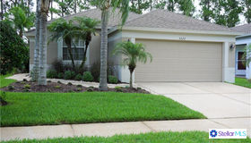5222 Gato Del Sol Circle, Wesley Chapel, FL 33544