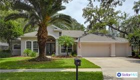 5612 Eagleglen Place, Lithia, FL 33547