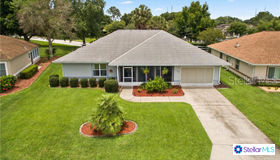 11057 Se 174th Loop, Summerfield, FL 34491