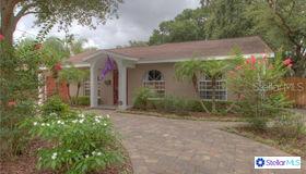 3819 W San Miguel Street, Tampa, FL 33629