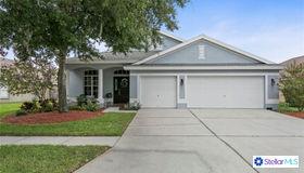 10125 Downey Lane, Tampa, FL 33626