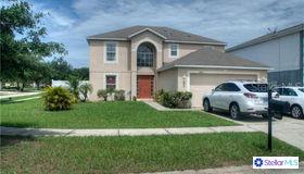 10445 River Bream Drive, Riverview, FL 33569