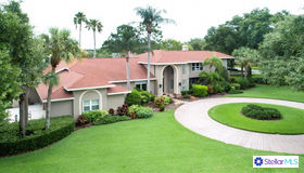 1265 N Jasmine Avenue, Tarpon Springs, FL 34689