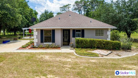 10928 Spanish Oak Drive, Howey IN The Hills, FL 34737