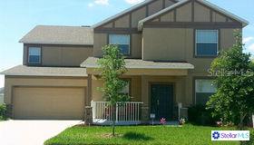 10803 Carloway Hills Drive, Wimauma, FL 33598